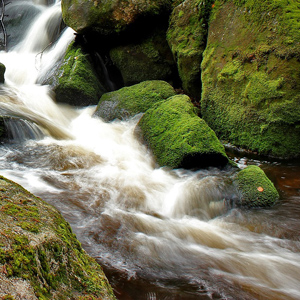 久米島の天然の湧水のイメージ